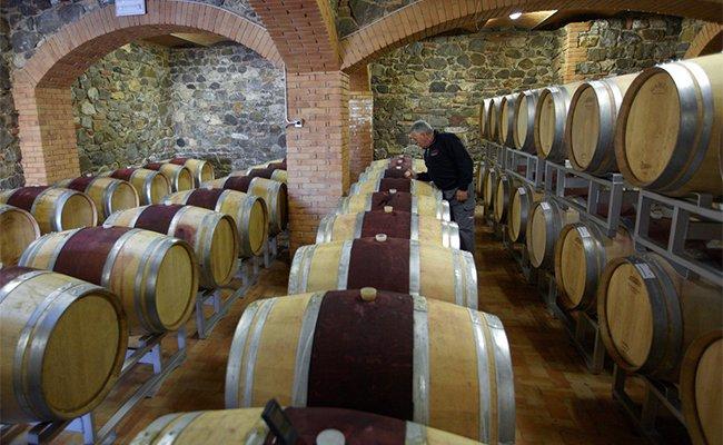 bulgari wine