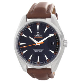 Omega Seamaster Aqua Terra Master Stainless Steel & Leather 41mm Watch