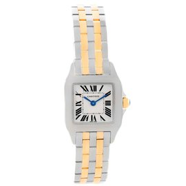 Cartier Santos Demoiselle W25066Z6 Stainless Steel and Yellow Gold 22mm Womens Watch