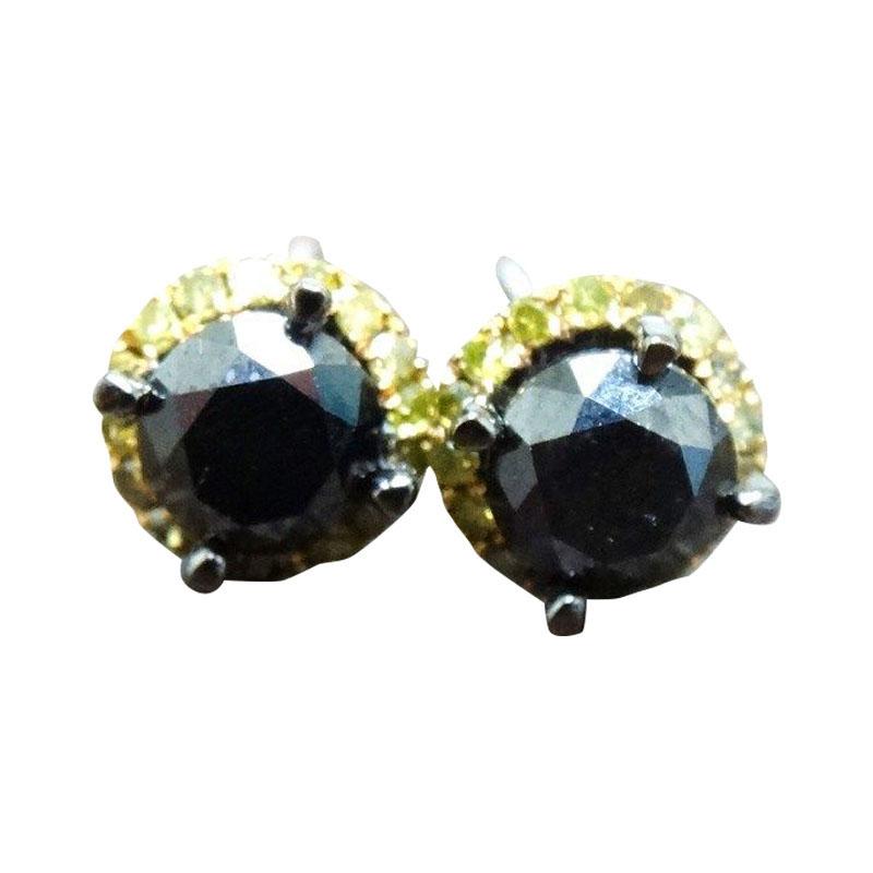 """Image of """"10K Black Gold Black Fancy Yellow Diamond Stud Earrings"""""""