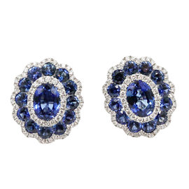 Gregg Ruth 18K White Gold Sapphire and Diamond Earrings