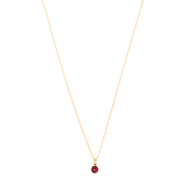 14k Yellow Gold Garnet January Birthstone Pendant with Chain